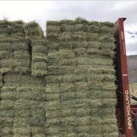 29 Acres farm ground in Utah