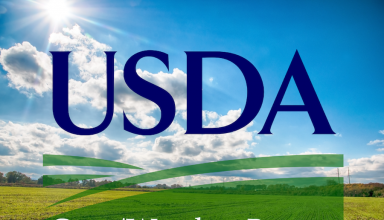 USDA Crop/Weather Report
