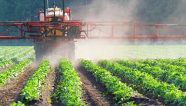 New Pesticide Laws & Regs Now Taking Effect in California