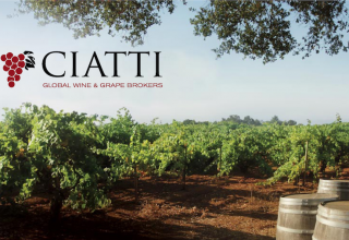 State of the North Coast Wine Industry with the Ciatti Co