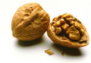 walnut genome