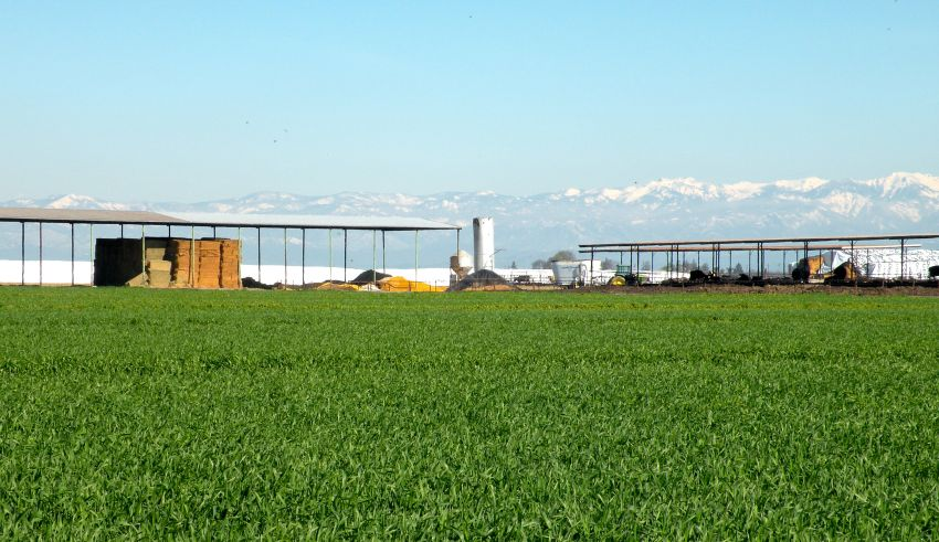 USDA Seeks Feedback