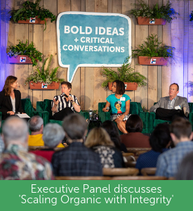 Bold ideas and Critical Conversation