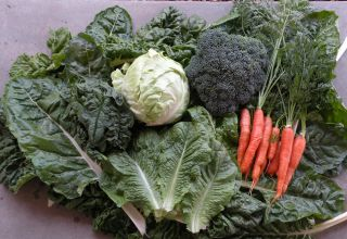 US Organic Sales