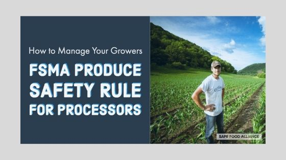 Safety Rule for Processors
