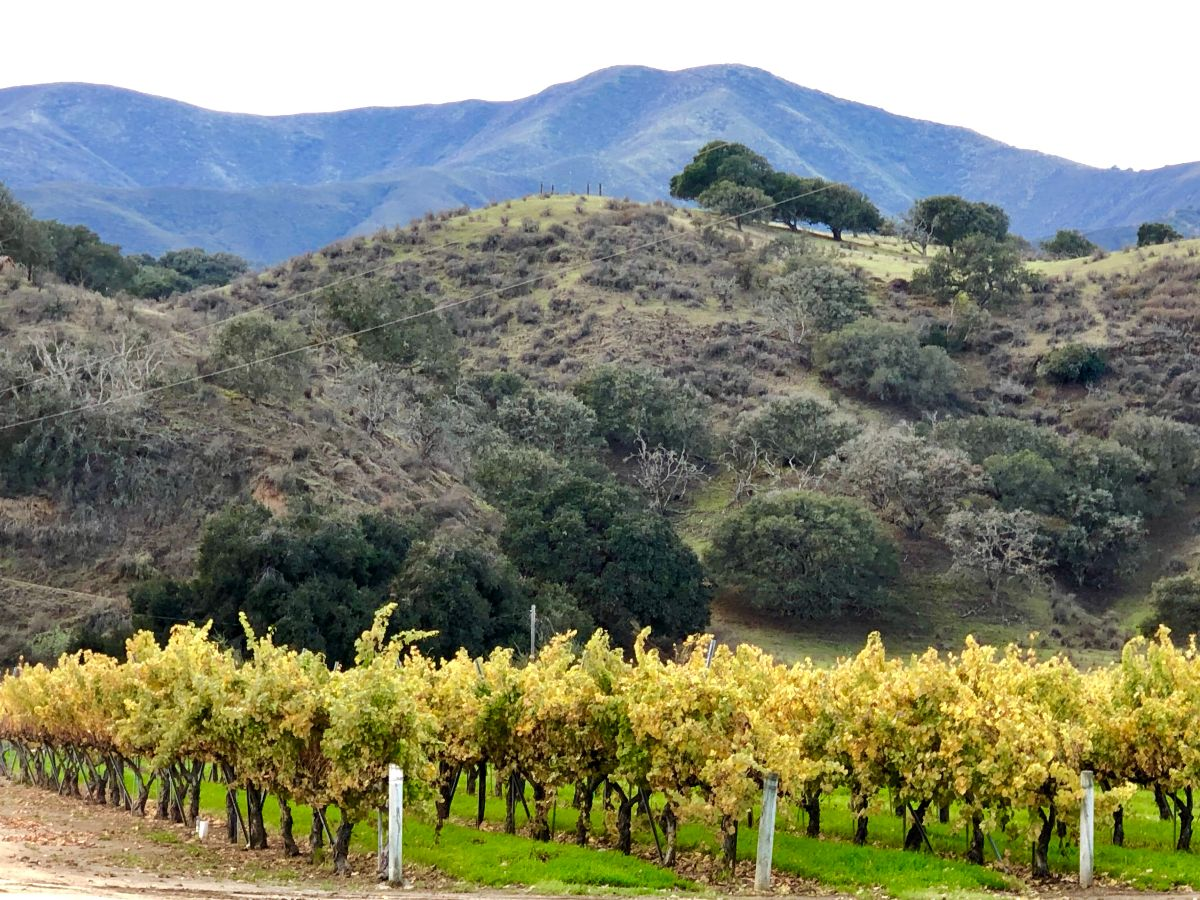 Travel California Wine Country's Back Roads