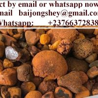 Gallstones(ox-cow) in great quantity for sale.